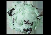 Mint Chocolate Chip Premium Ice Cream